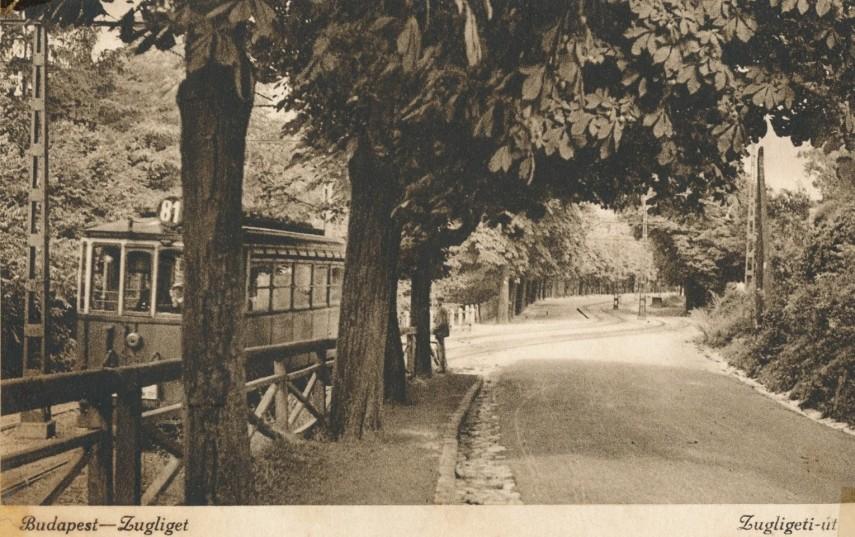 1900-as évek első fele, Zugligeti út