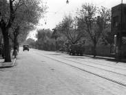 1956, Erzsébet királyné útja, 14. kerület