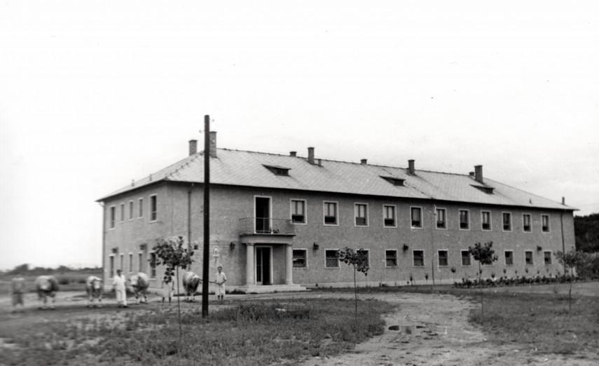 1954, Remény utca, 14. kerület