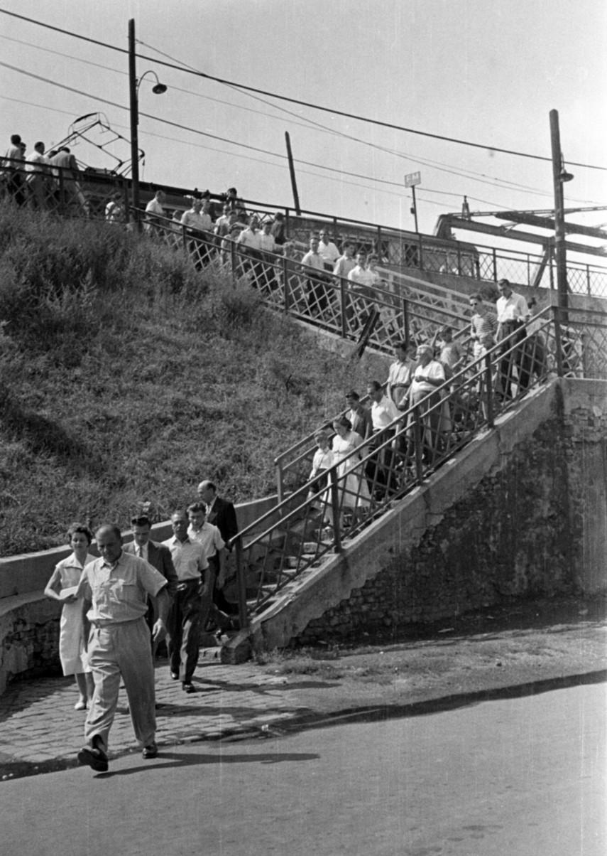 1955, Salgótarjáni utca, 8. kerület