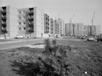 1986, Óceánárok utca. 4. kerület
