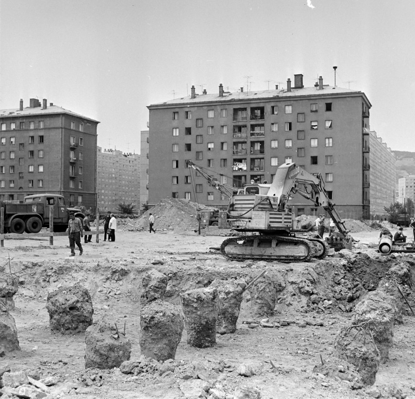 1973, Korvin Ottó (Pacsirtamező) utca, 3. kerület