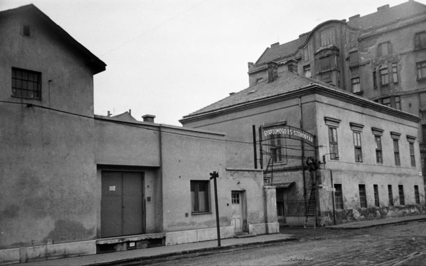 1968, Kárpát utca, 13. kerület