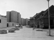 1977, Mókus utca, 3. kerület
