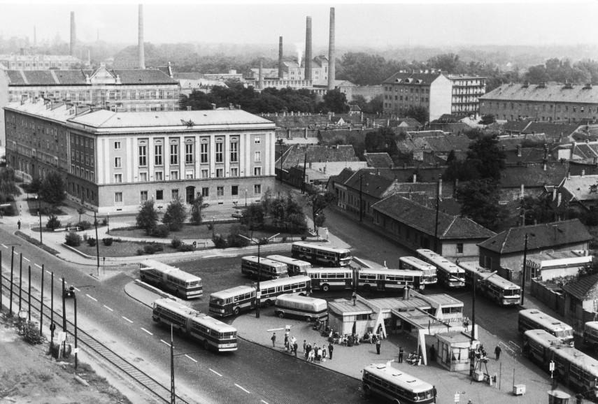 1970, Miklós utca, 3. kerület