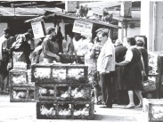 1960-as évek, Teleki tér, 8. kerület