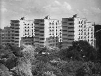 1960-as évek, Köztársaság (II. János Pál pápa) tér, 8. kerület