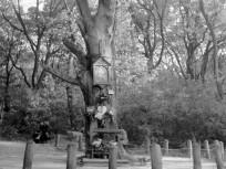 1950, Jánoshegyi út, 12. kerület