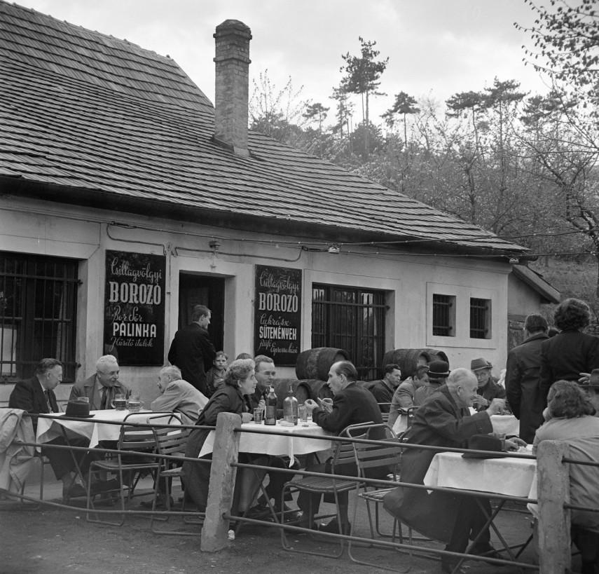 1961, Béla király út 42., 12. kerület