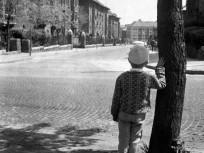 1960, Németvölgyi út, 12. kerület