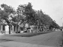 1972, Megyeri út, 4. kerület